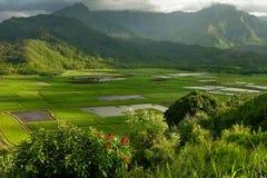 Soirée en vallée de Hanalei photos stock