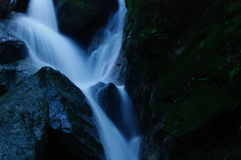 Soirée Forest Waterfall Photo stock