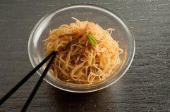 soja spaghetti Obrazy Royalty Free