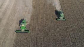 Sojabönafältet, den flyg- sikten på gräsplan kombinerar arbete på det stora jordbruks- territoriet under av skörd stock video