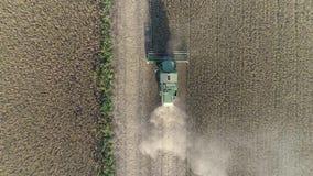 Sojabönaplockningen på hösten, den flyg- sikten av skördetröskan som arbetar i fält under säsong av sammankomsten, kantjusterar lager videofilmer