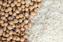 Sojabönor och vita ris Royaltyfri Bild