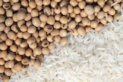 Sojabönor och vita ris Arkivfoto