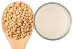Sojabohne und Sojabohnen-Milch II Lizenzfreie Stockfotos