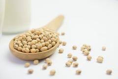 Sojabohnenöl-Bohnen und Sojabohnenöl-Milch Stockfotografie