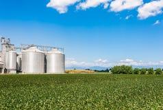 Sojabohnenölfeld und landwirtschaftliche Silos Stockfoto