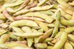 Sojabohnenbeschaffenheitshintergrund stockbild