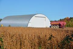 Sojabohnenfeld in der Front ein Bauernhof Lizenzfreie Stockfotos