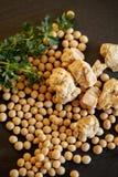 Sojabohnenlebensmittel der gesunden Sojabohne Lizenzfreie Stockfotos