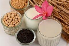 Sojabohnenmilch, Sojabohnenöl, schwarze Samen des indischen Sesams und gekeimter Naturreis (GABA) Lizenzfreies Stockbild