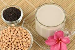 Sojabohnenmilch, Sojabohnenöl, schwarze Samen des indischen Sesams und gekeimter Naturreis (GABA) Lizenzfreie Stockfotos