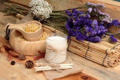 Sojamelk met sojabonen Royalty-vrije Stock Afbeeldingen