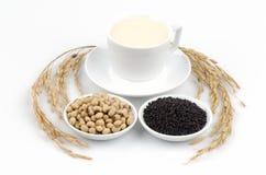 Sojamilch und schwarze Samen des indischen Sesams (Glycin maximales (L.) Merr.). Lizenzfreies Stockbild