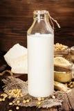 Sojaproducten (sojabloem, tofu, sojamelk, sojasaus) Royalty-vrije Stock Foto