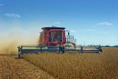 Sojas de la cosecha mecanizada Imagen de archivo