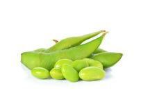 Sojas verdes imágenes de archivo libres de regalías