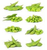 Sojas verdes imagen de archivo