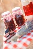Sok, jagody i lawenda w słomianym koszu, Fotografia Stock