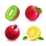 Sok owoc ikon wektoru realistyczny set Apple, cytryna, kiwi owoc, grapefruitowa royalty ilustracja