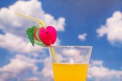 sok pomarańczowy słomy Zdjęcie Royalty Free