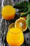 Sok Pomarańczowy fotografii Akcyjni przepisy Obrazy Royalty Free