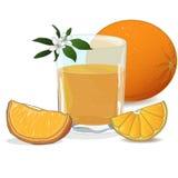 Sok pomarańczowy i plasterki ilustracji