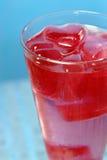 sok żurawinowy Obrazy Royalty Free