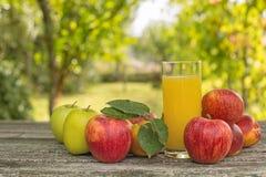 sok z owoców Zdjęcia Stock