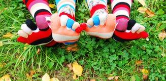 Sokken in de herfst. Royalty-vrije Stock Afbeelding