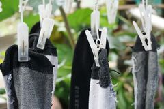 Sokken drogere en plastic klem royalty-vrije stock foto's