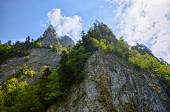 Sokolica peak in Pieniny mountain, Poland Stock Photos