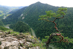 Sokolica,  Pieniny Mountains, National Park in Poland Royalty Free Stock Photos