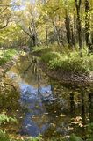 Sokolniki park in autumn. A pond in Sokolniki park in a sunny autumn day stock photo