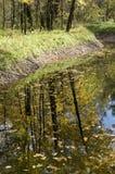 Sokolniki park in autumn. A pond in Sokolniki park in a sunny autumn day royalty free stock photography