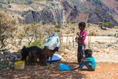 Sokotra的,也门人们 免版税库存图片