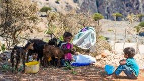 Sokotra的,也门人们 免版税库存照片
