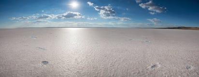 Sol över den torkade salta sjön Arkivfoton