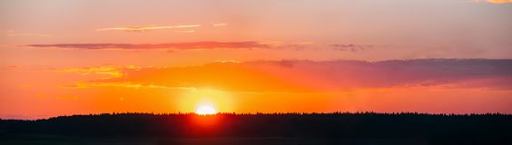 Sol över Forest Horizon In Sunset, soluppgångTid bakgrund brigham royaltyfri foto