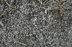 Sol вытек от земли Стоковая Фотография