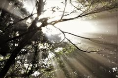 sol Imagen de archivo