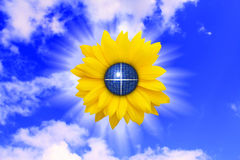 sol- Arkivbilder