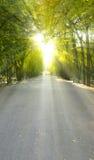 Sol Imagen de archivo libre de regalías