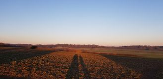 Sol bak fältskuggor arkivbild