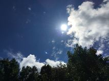 Sol brilhante Fotografia de Stock