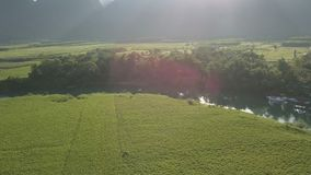 Sol brillante de detrás las colinas sobre jardines verdes de los campos metrajes