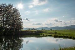 Sol brillante sobre el estanque de peces imágenes de archivo libres de regalías