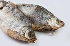 soląca wysuszona ryba Zdjęcia Royalty Free