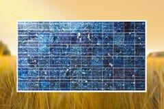 Sol- cell på vetefält Arkivfoton