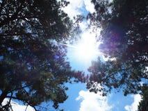 Sol da luz de céu Imagem de Stock Royalty Free