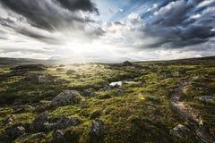 Sol da meia-noite em Lapland imagens de stock royalty free